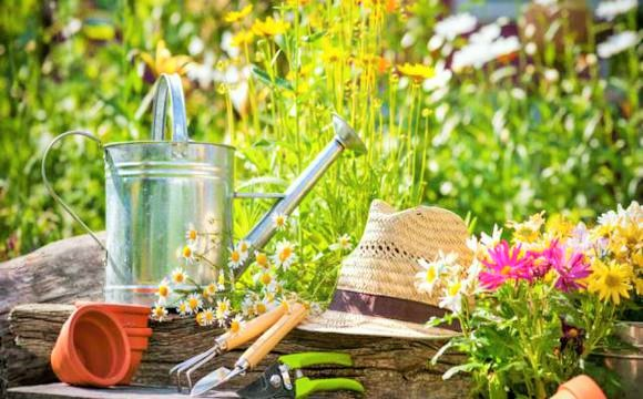 decoração de jardim