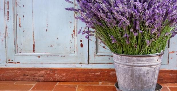 Интерьер в стиле прованс: отдохните душой в собственном доме